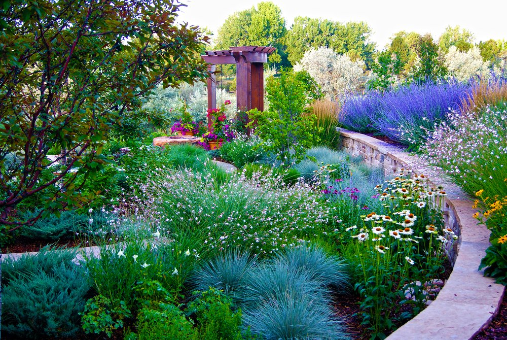 Denver Lawn Maintenance and Garden Care Designscapes Colorado