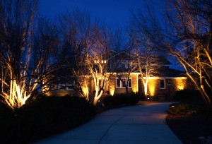 Landscape lighting design designscapes colorado our designers are certified architectural landscape lighting designers calld with a passion for outdoor lighting we have installed almost every kind of mozeypictures Image collections