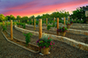 Retaining walls terrace this Colorado vineyard nicely Structures & Stonework 7