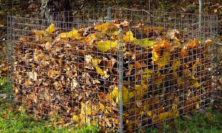 fall-leaf-compost